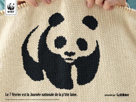 Panda_Wallpaper_Fre
